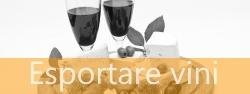 Esportare vini